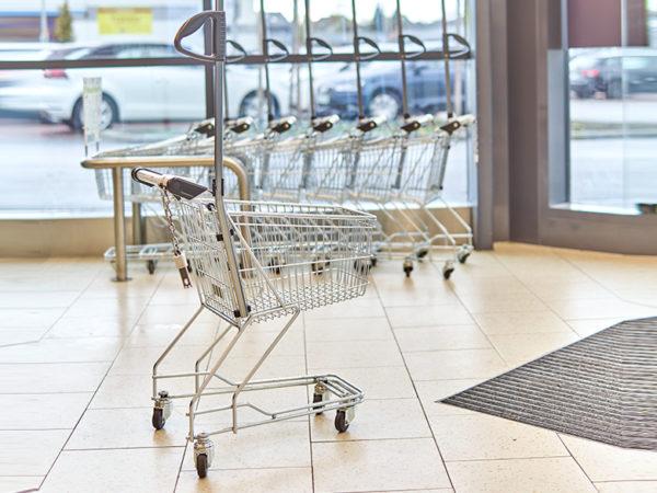 Shopping Cart Children Zoom In
